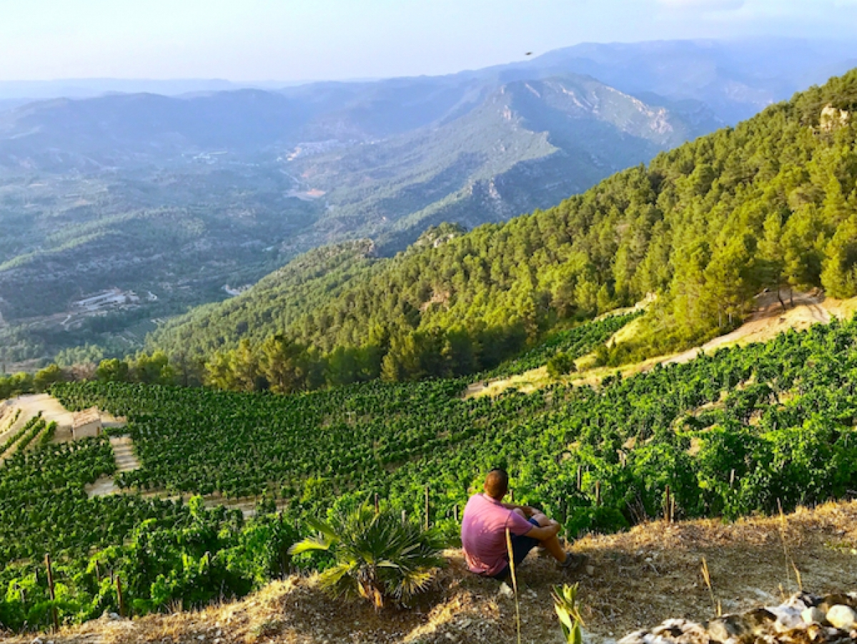 Private Wine Tours from Barcelona, Sitges, Tarragona to Priorat and Penedes - TopWineExperience