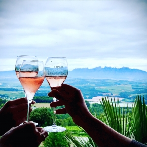 TopWineExperience - Premium Sparkling Wine Tasting at Winery