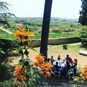 TopWineExperience - Wine lovers on a Wine Tour in Barcleona vineyards area