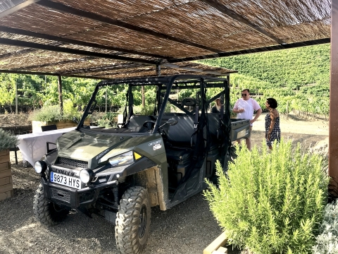 TopWineExperience 4x4 vineyards visit in Priorat