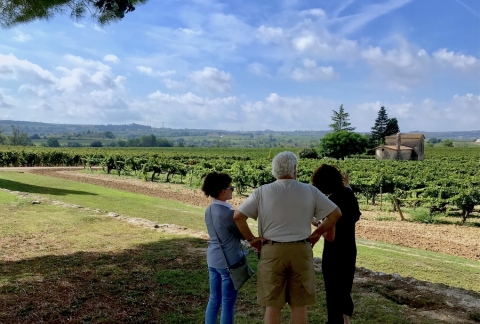 TopWineExperience - Private Premium Wine tour in Sitges