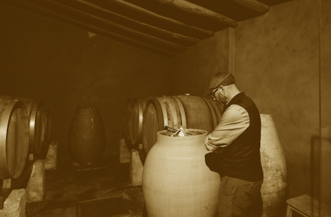TopWineExperience - Tailor-made wine tours in Barcelona. Organic amphora wines.