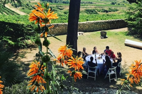 TopWineExperience - Private bespoke wine tour with Lunch in a winery